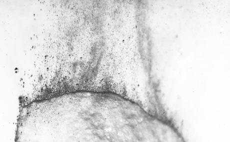 chalk dissolve: sebastiane hegarty